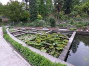 Botanical garden Padua