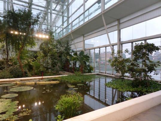 New Botanical garden Padua
