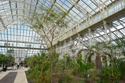 Temperate House_Kew Gardens 02
