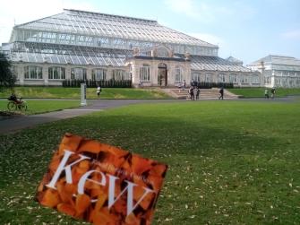 Temperate House_Kew Gardens 07