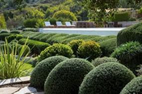 Corfu gardens 03