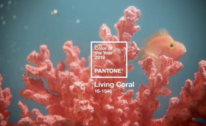 Living Coral ©pantone