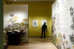 Teylers Museum_01