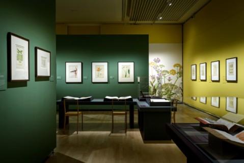 Teylers Museum_02