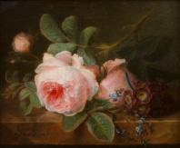 Cornelis Van Spaendonck, Cabbage Rose, 1800, oil on marble, 21.9 x 25.8 cm ©Het Noordbrabant Museum, 's-Hertogenbosch