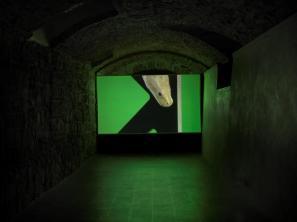 Luca Trevisani Museo M.Marini