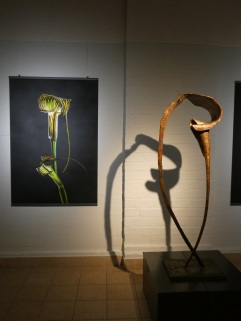 Exhibition Richard Fischer + sculpture Jean Jacques Argueyrolles ©FlowerArtMuseum