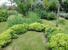 Healing garden Mati 01