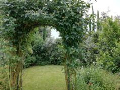 Healing garden Mati 04